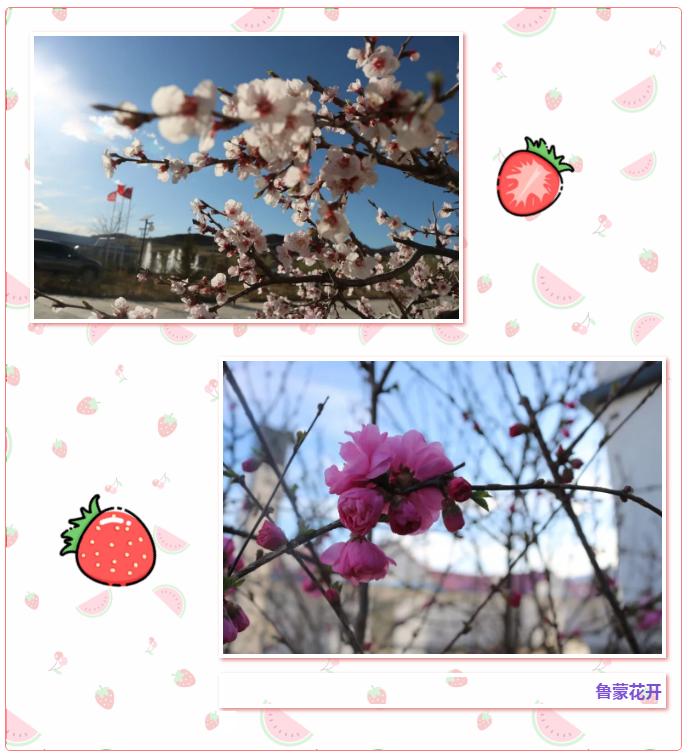 【重山影像】共享重山夏日美景89
