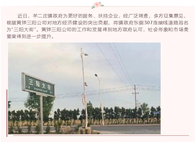 """【荣誉】307连接线道路冠名为""""三阳大街""""23"""